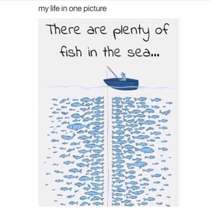 There are plenty of fish in the sea for Plenty of fish in the sea
